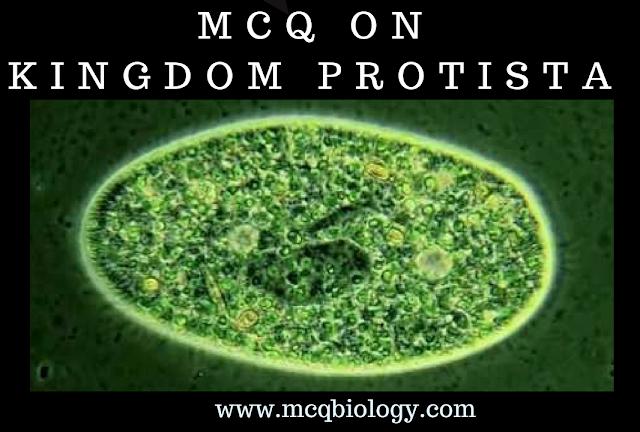 Paramecium - MCQ on Protozoans