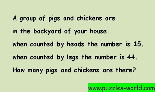 Pigs and Chicken Puzzle