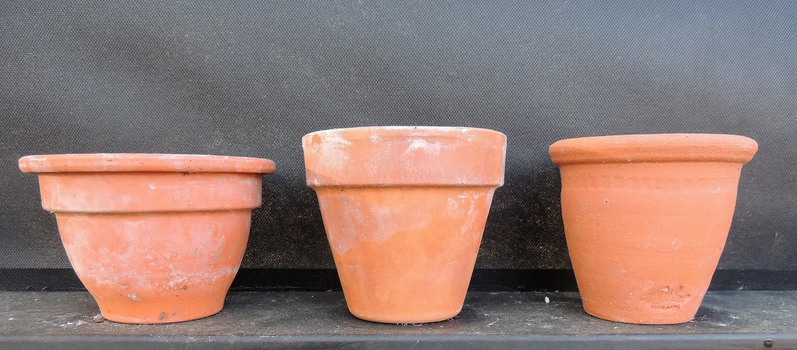 Clay Versus Plastic Pots