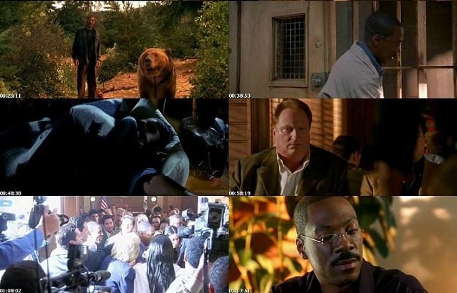 Download Film Terbaru Dr Dolittle 1 5 1998 2009 Collection