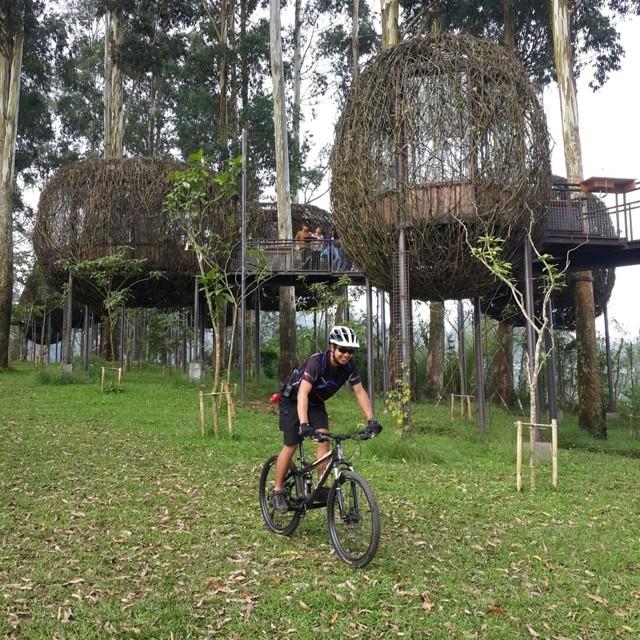 foto serunya bersepeda di dusun bambu