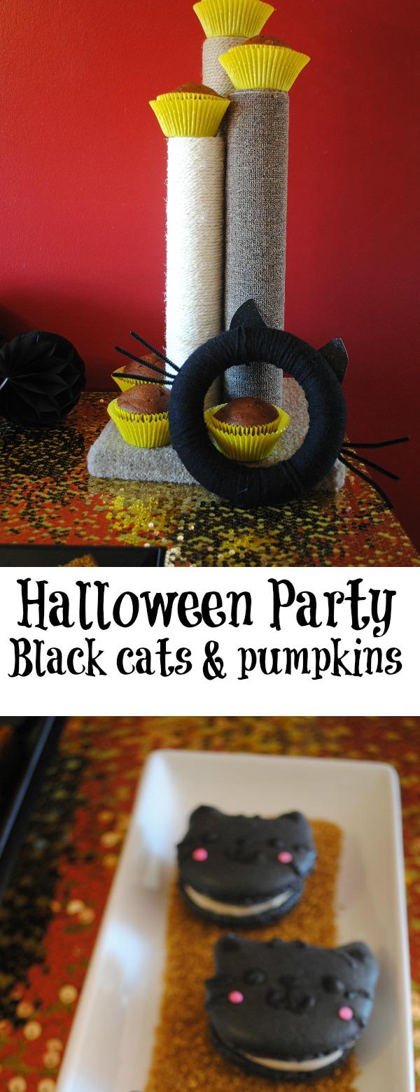 Halloween-party-black-cats-pumpkins