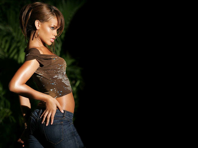 Pitbull Wallpapers 3d Rihanna Hot Hd Wallpapers 2013 All About Hd Wallpapers