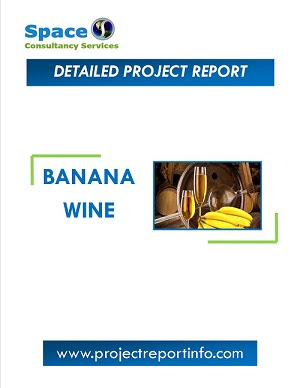 Banana Wine Manufacturing Project Report