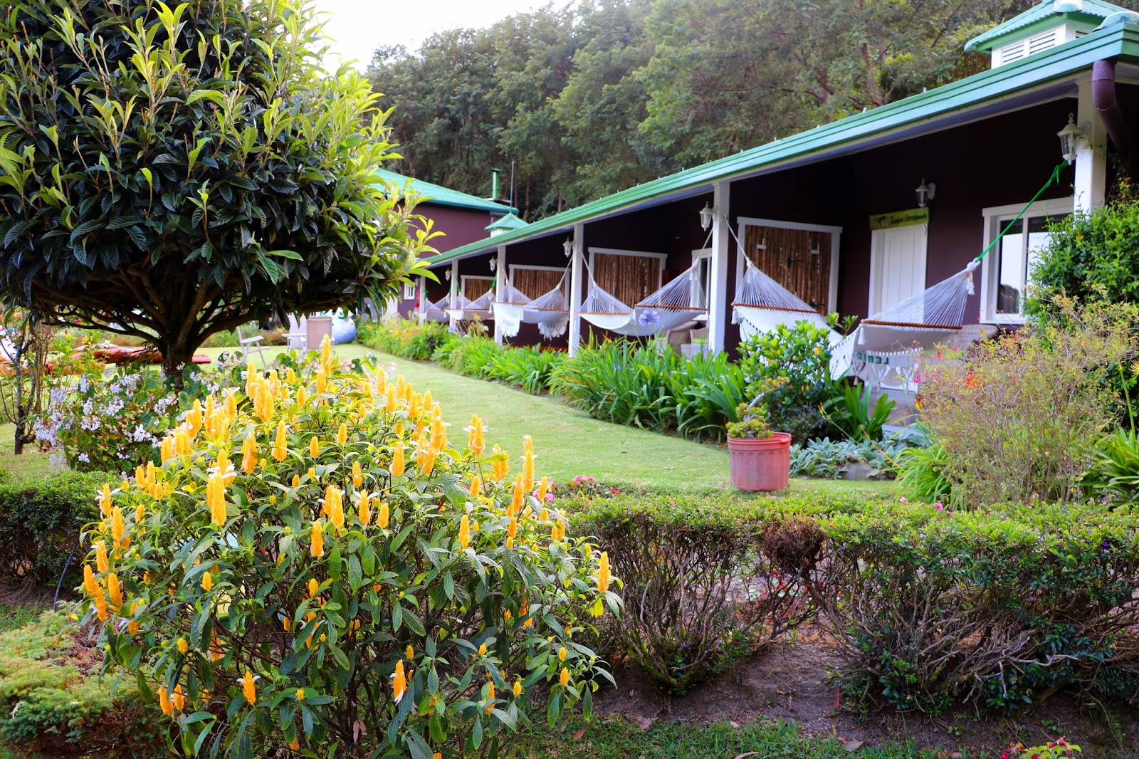 The beautiful Finca Lérida is a great place to stay and/or dine at Boquete, Chiriqui Panama