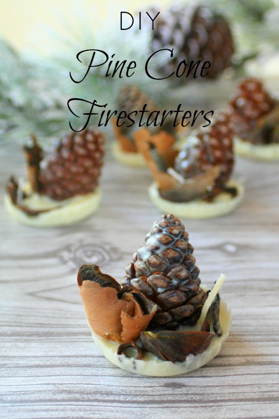 Also Lately My Husband Has Really Enjoyed Using Our Out Door Fireplace When I Realized That Could Make Pine Cone Firestarters Was All About It