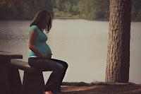 https://pixabay.com/es/mujer-embarazada-maternidad-358767/
