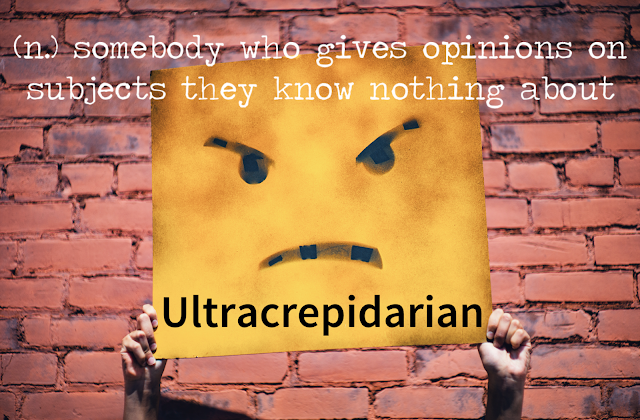 Ultracrepidarian