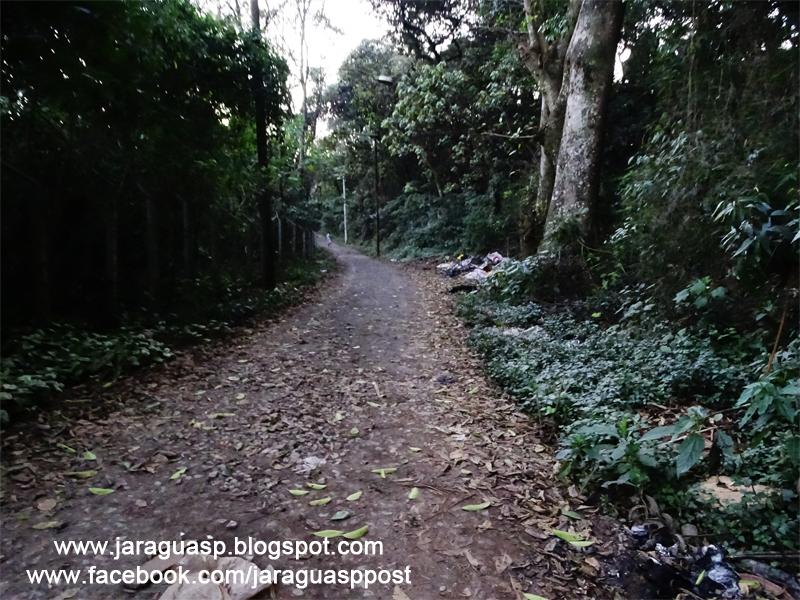 A trilha dos escoteiros tem 400 metros e é de terra