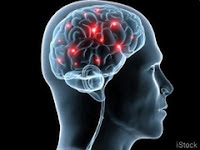 Can Memory Be Restored, Can Damaged Brains Be Repaired?