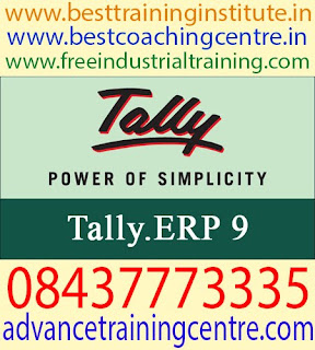 Best Tally Training in Mohali