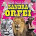 """Andria: incendio al Circo Orfei """"qualcuno ha gettato del liquido infiammabile"""""""