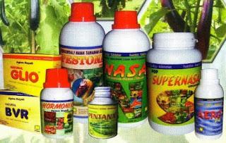 agen-nasa-di-baso-agam-082334020868