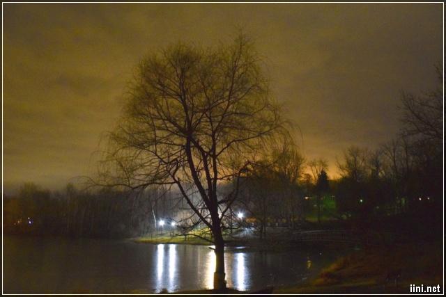 Đêm mùa Đông lặng lẽ