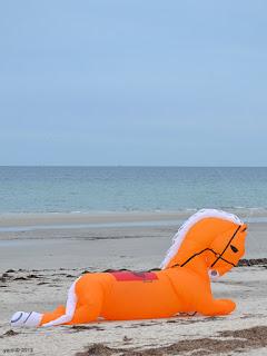 orange beach horse