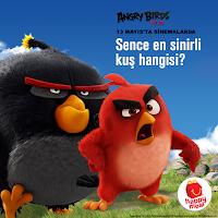 Sence en sinirli kuş hangisi?