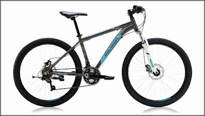 Harga Jual Sepeda Gunung Polygon Monarch 4 Grey