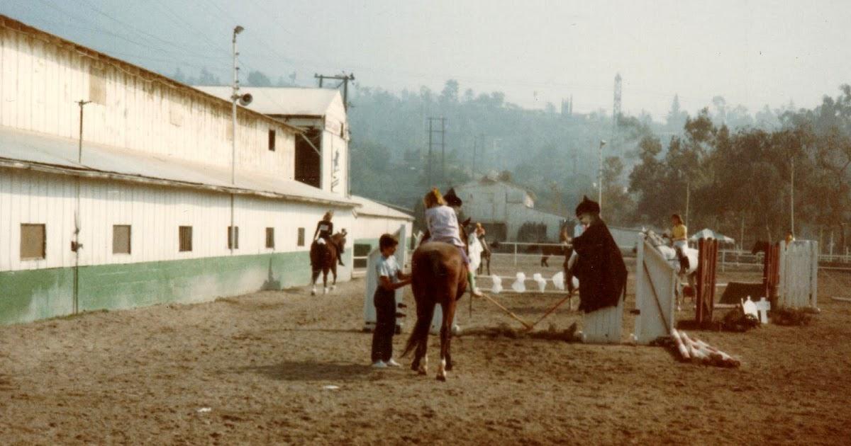 Braymere Custom Saddlery: Halloween Horse Costumes Circa 1985