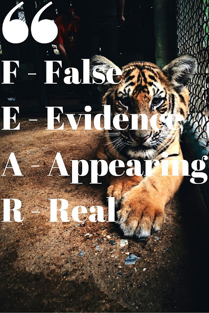 Fear. False evidence appearing real.