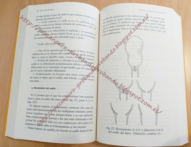 NUEVE MESES DE ESPERA: LA GUIA DEFINITIVA DEL EMBARAZO, PARTO Y POSTPARTO JOSEFINA RUIZ VEGA; M CONCEPCION DIEZ RUBIO