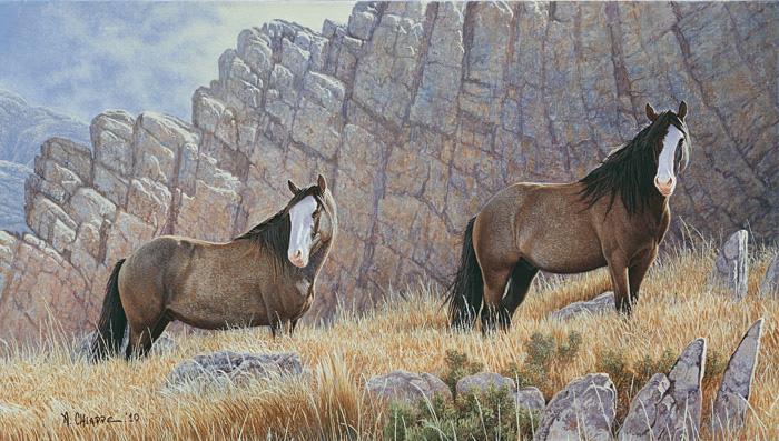 gaucho+caballos05