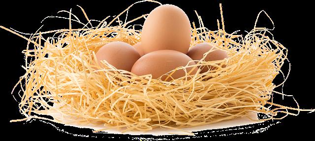 Wartość odżywcza jajek, skład chemiczny jajka, czy warto jeść jajka, ile jajek można jeść, daylicooking
