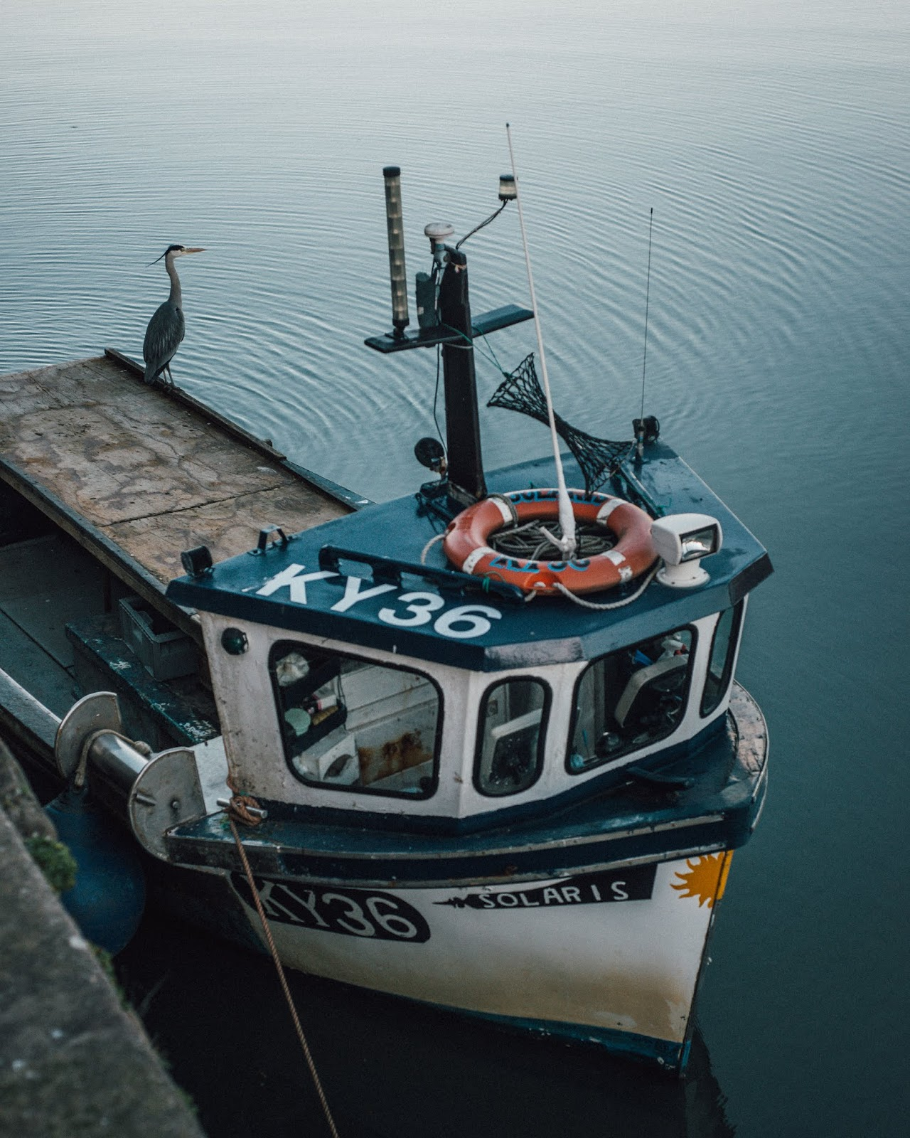 st andrews harbour pier boat fishing heron liquidgrain liquid grain