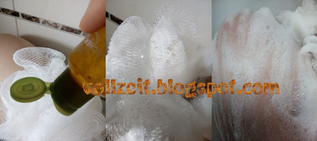 bio vegan duschgel concentrated aloe vera mango gesund