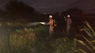 Saúde de Baraúna faz pulverização de inseticida para combater mosquito Aedes aegypti