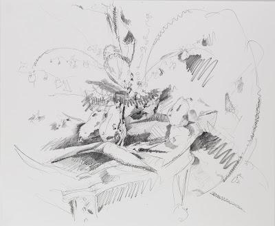flower, birds of paradise drawing, graphite on vellum