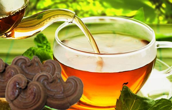 nấm linh chi dùng để pha trà