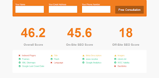 SearchBloom the best Free SEO analysis tool
