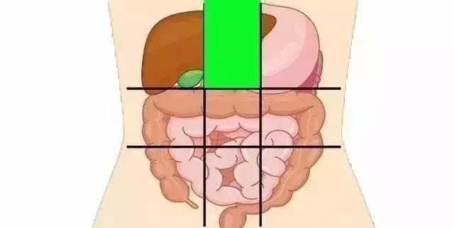 一張腹部地圖,讓你終身受益!(胃炎、脂肪肝、結腸息肉)