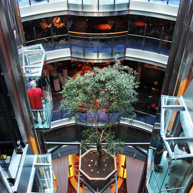 Celebrity Equinox Lift Tree Lobby