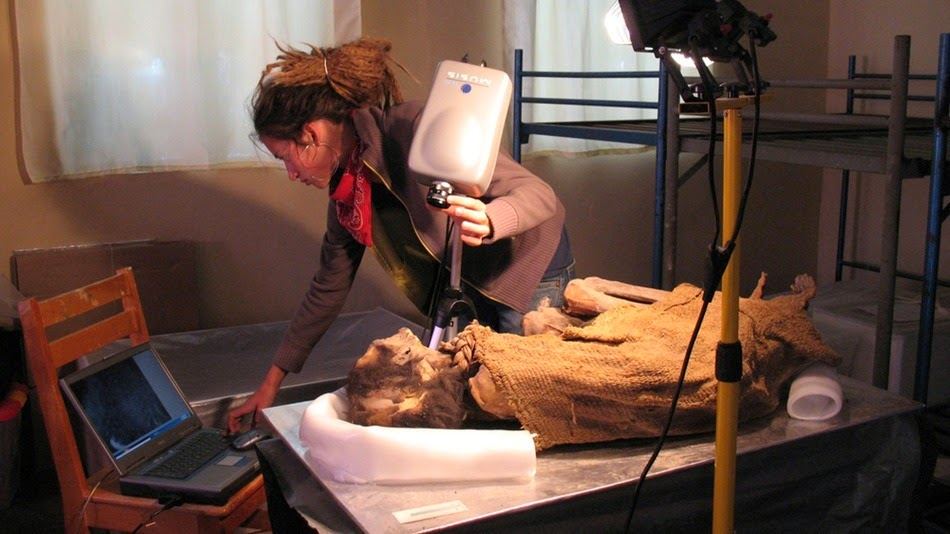 Research finds arsenic poisoning in Chilean mummies