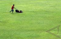 pangkas rumput lapangan sepak bola dengan mesin