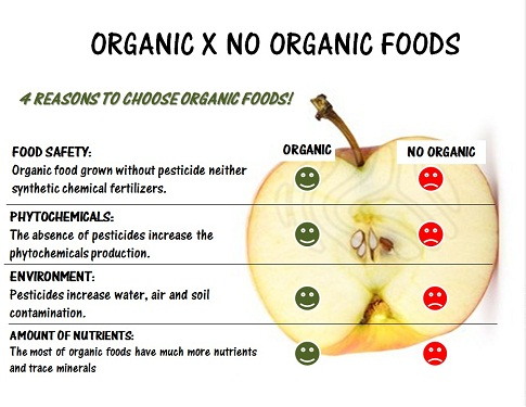 Image result for no pesticides in organic food