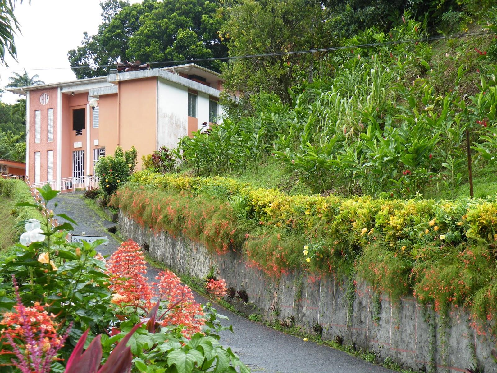 Du four au jardin et mes dix doigts fonds saint denis for 9 jardin fatima bedar saint denis