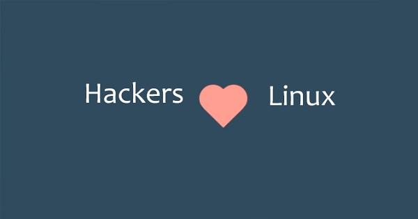 6 Linux OS Yang Sering Dipakai Hacker Dan Cyber Security