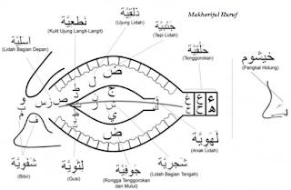 Pentingnya Ilmu Tajwid Dalam Membaca Al Quran