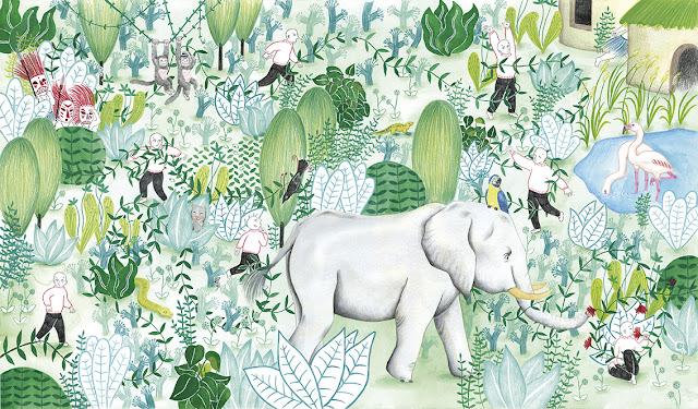ilustración, ilustración para prensa, ilustración para revista, ilustración botánica, manual de riego, cuidado de plantas, sembrar, regar, cuidado de plantas, planta en crecimiento, enredadera, selva, salvaje, animales, ilustración de selva, elefante, papagayo, flamencos,