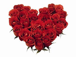 Vörös Rózsa jelentése