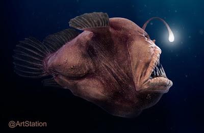 ANGLERFISH, Ikan Laut Dalam