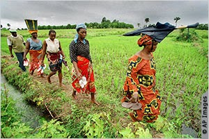 closing the gender gap in agriculture In addition to increasing overall agricultural production, closing the gender gap in agriculture would also put more income in the hands of women - a proven strategy for improving health, nutrition and education outcomes for children.