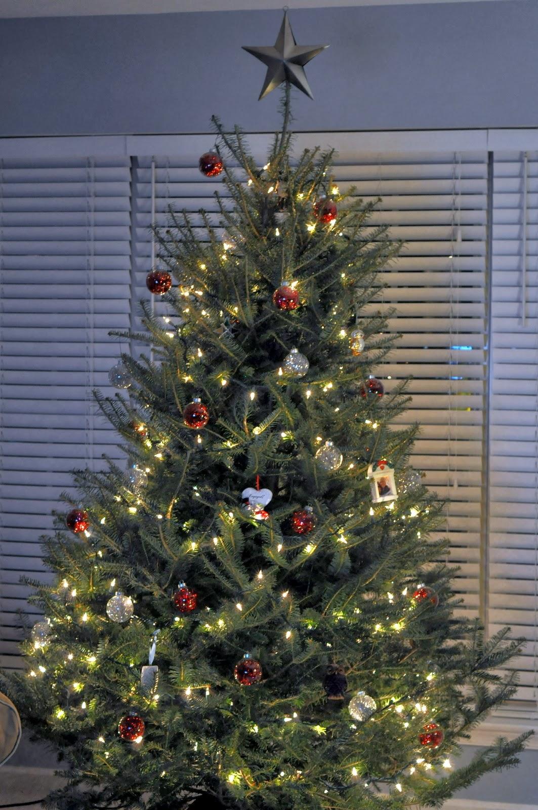 Rittler Family Christmas Tree 2013 | Taste As You Go