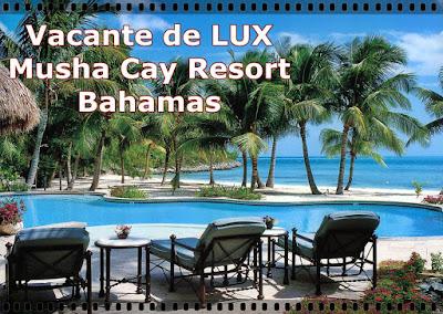 Vacante exotice de lux Musha Cay Resort Bahamas