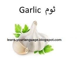 ثوم : Garlic