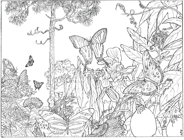 Coloring Page Nature Scene  Images About Coloring Pages  Butterflies On Pinterest