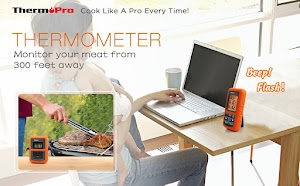 Thermopro TP-20 Wireless Meat Thermometer - Best Inexpensive Food Thermometer