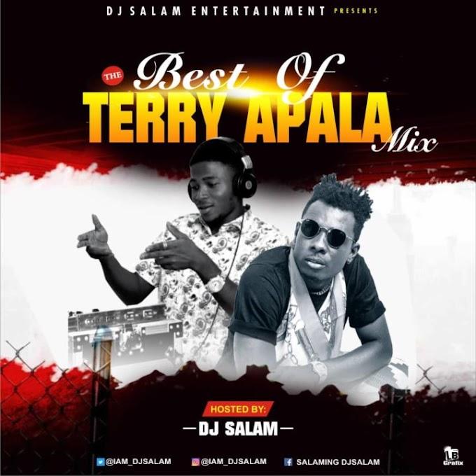 Mixtape: Dj Salam – Best Of Terry Apala Mix | @Iam_djsalam